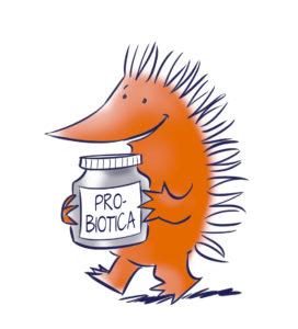 egel met probiotica